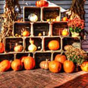 Thanksgiving Pumpkin Display No. 2 Art Print