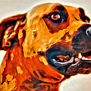 That Doggone Face Art Print