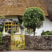 Thatched Cottage House Art Print