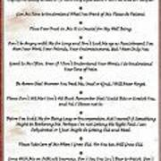 The 10 Commandments For Pets On Red Marble Art Print