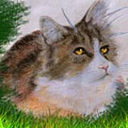 The Abandoned Kitten Art Print