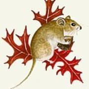 The Acorn Mouse Art Print