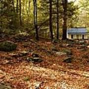 The Alfred Reagan Cabin Autumn Art Print