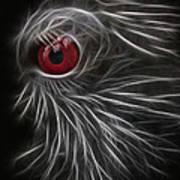 The All Seeing Eye Art Print