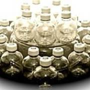 The Apple Bottle Art Print