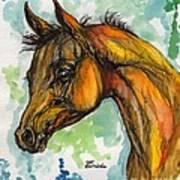 The Arabian Foal Art Print