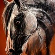 The Arabian Horse Art Print