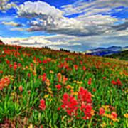 The Art Of Wildflowers Art Print