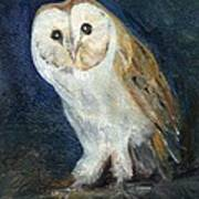 The Barn Owl Art Print
