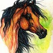The Bay Arabian Horse 11 Art Print