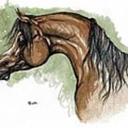 The Bay Arabian Horse 12 Art Print