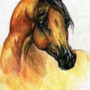 The Bay Arabian Horse 14 Art Print