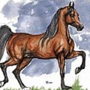 The Bay Arabian Horse 17 Art Print