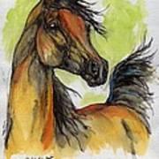 The Bay Arabian Horse 5 Art Print