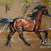 The Bay Horse Art Print