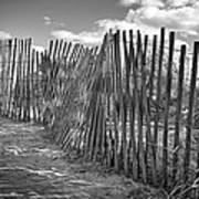 The Beach Fence Art Print by Scott Norris