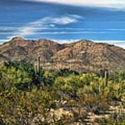 The Beautiful Arizona Desert Art Print