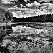 The Beautiful Fly Pond On Rondaxe Road - Old Forge Ny Art Print by David Patterson
