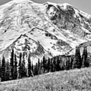 The Beautiful Mount Rainier At Sunrise Park - Washington State Art Print