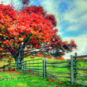 The Beauty Of Fall II - Blue Ridge Parkway Art Print by Dan Carmichael