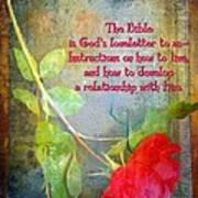 The Bible Art Print