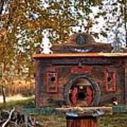The Birdhouse Kingdom - Red-naped Sapsucker Art Print