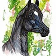 The Black Horse 1 Art Print