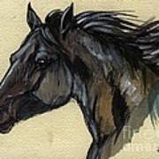 The Black Horse Art Print