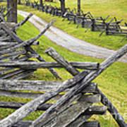 The Bloody Lane At Antietam Art Print