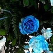 The Blue Pair Art Print