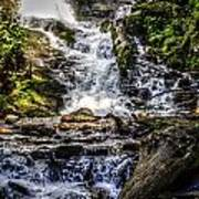 The Bottom Of Mingo Falls Art Print