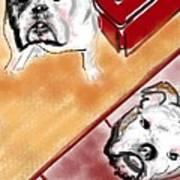 The Bulldogs Art Print