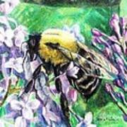The Busy Bee And The Lilac Tree Art Print