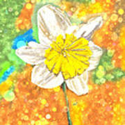 The Buzzing Life Of A Spring Narcissus Art Print