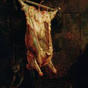 The Carcass Of An Ox, Late 1630s Art Print