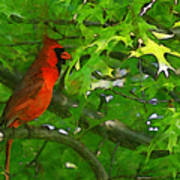 The Cardinal 2 Painterly Art Print