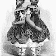 The Carolina Twins, 1866 Art Print