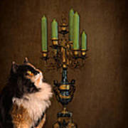 The Cat And The Candelabra Art Print