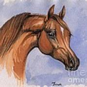 The Chestnut Arabian Horse 1 Art Print