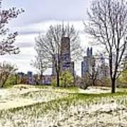 The Chicago Skyline Day-002 Art Print