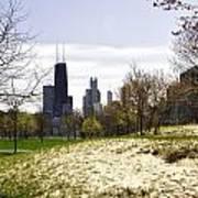 The Chicago Skyline Day-003 Art Print