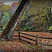 The Country Road Art Print