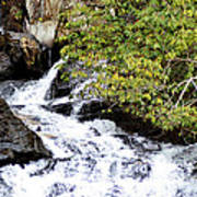 The Creek At Anna Ruby Falls Art Print