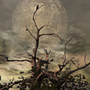 The Crow Tree Art Print