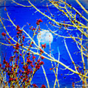 The Day The Moon Stayed Out All Day Art Print