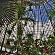 The Dome 002 Buffalo Botanical Gardens Series Art Print