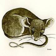 The Dreaming Mouse Art Print