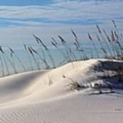 The Dunes Of Destin Art Print