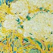The Elderflower Tree Oil On Canvas Art Print