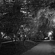 The Evening Foliage Tunnel Art Print